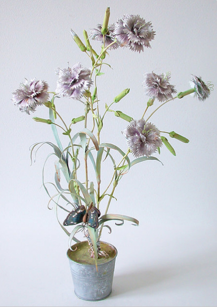 Carmen Almond wild carnation