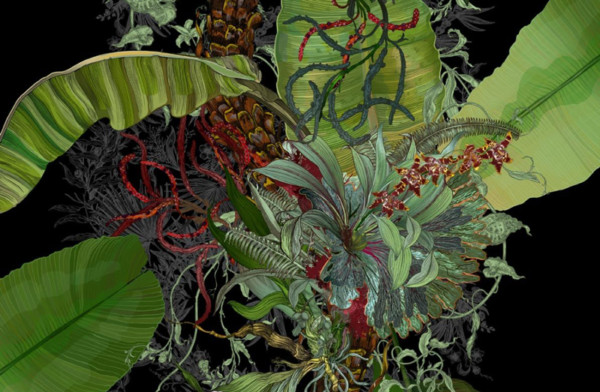 Timorous Beasties - Topical Tropical wallpaper