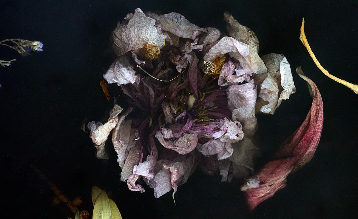 Detail image-Marcin Rusak