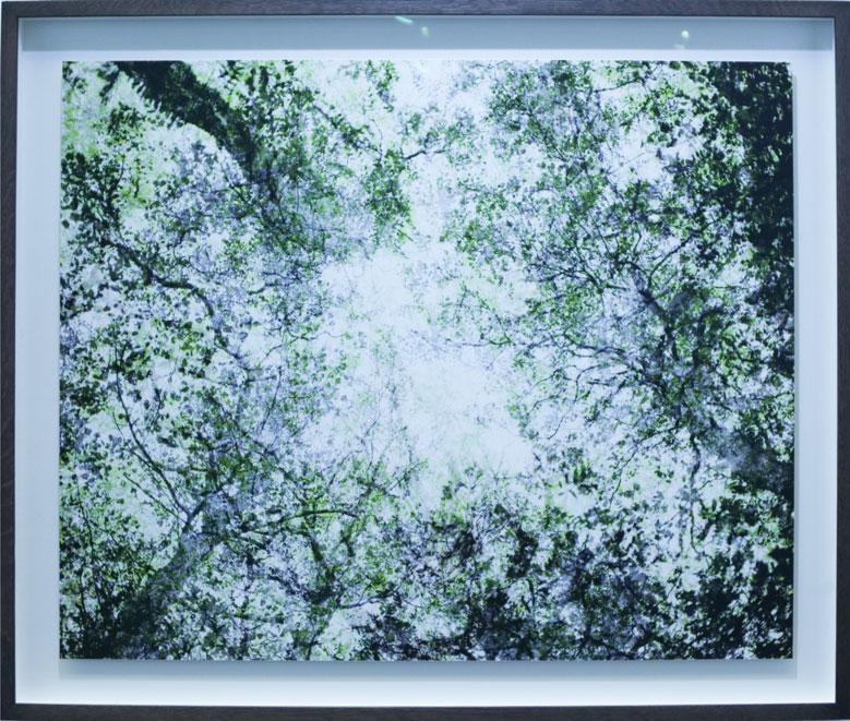 Santen Tuori - Purdy Hicks Gallery