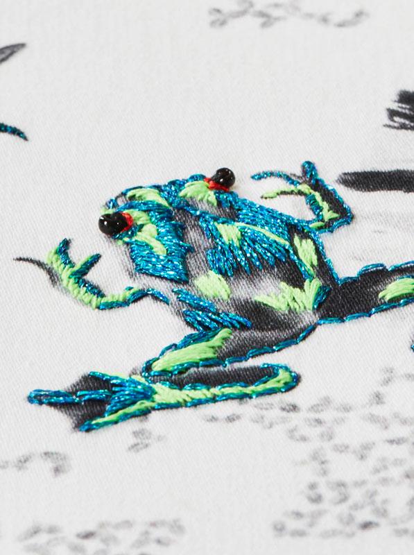 Frog Detail - Susannah Weiland