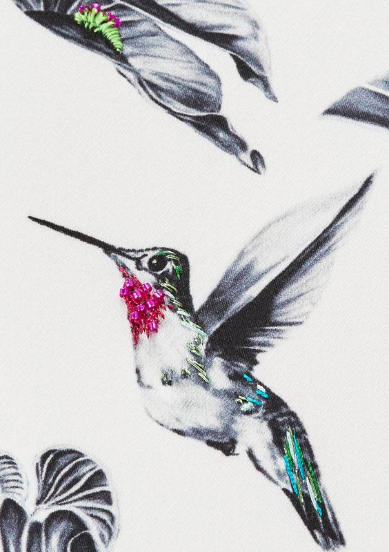 Hummingbird - Susannah Weiland
